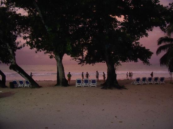 Hotel Cote D'Or: tramonto sulla spiaggia visto dal bar
