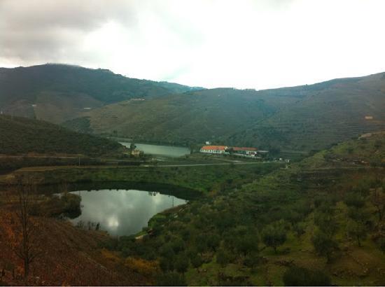Quinta do Tedo: The view