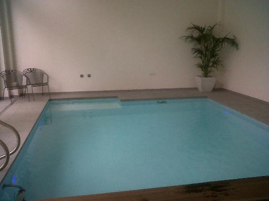 Sandton Grand Hotel Reylof: the swimming pool, small but adequate