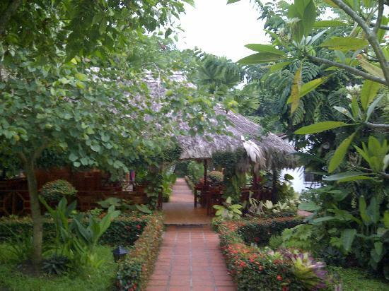 Hotel Escape Caribeno: Area del restaurante.  Es pequeño, pero en Puerto Viejo hay muchas opciones...