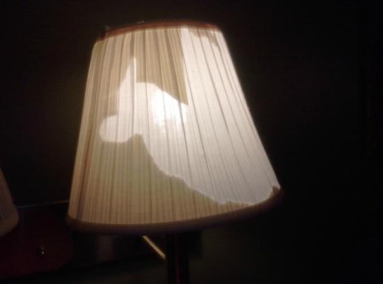 Knights Inn Waco: Lampshade in the room.