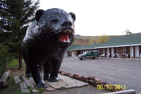 Black Bear Inn: The Bear
