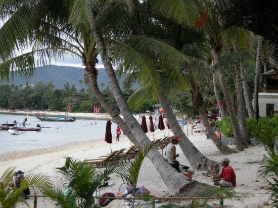 Novotel Samui Resort Chaweng Beach Kandaburi: Beach