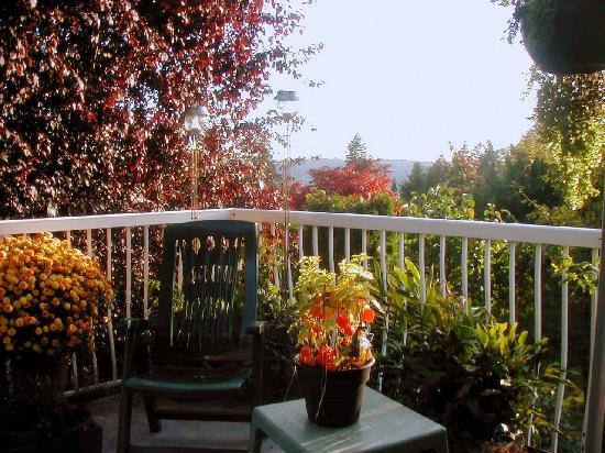 Eagle Mountain Bed and Breakfast: deck fall view