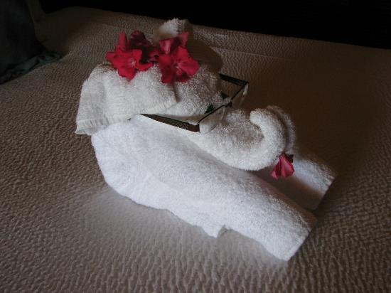 Sandals Royal Caribbean Resort and Private Island: Enoyed our daily towel creation!