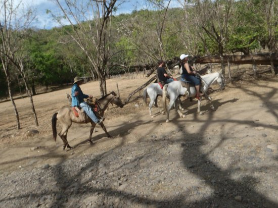 Beyond Adventure Tours: mas cabalgata