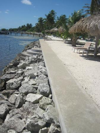 Cocotal Inn & Cabanas: beach wall with a nice sandy beach on top with lounge chairs if you want to park under a palapa