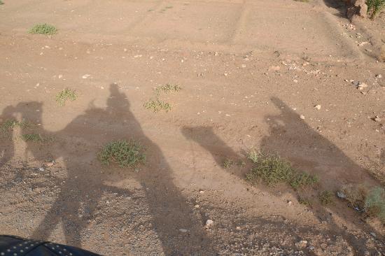 Riad Porte Royale: Zonsopkomst