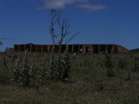 Maria Island National Park: Convict Cells