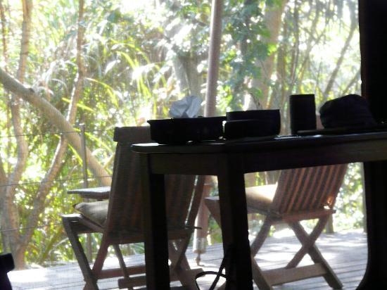 Rhino River Camp: vista dalla veranda