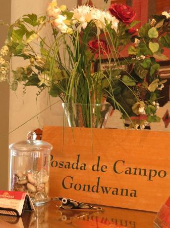 Posada de Campo Gondwana: Entrada
