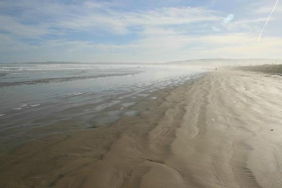 Beach Huts Middleton: Walk along the local beach, just 500 metres away