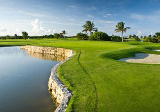 Cancun Tourism: Best of Cancun