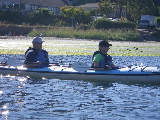 Shearwater Kayak Tours: Quality equipment,and guides