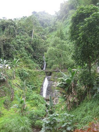 Blue Mountain Bicycle Tour : beautiful waterfall