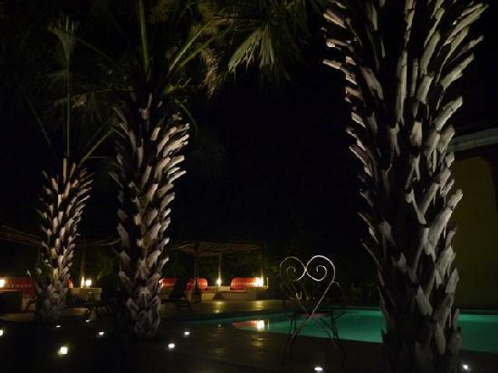 Hacienda Santa Cruz: Palms by pool area