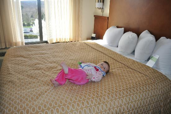 Hyatt Place Mystic: Comfy Bed