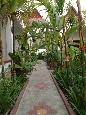 La Niche d'Angkor Boutique Hotel: nice greenery around the corridor it also brings some sense of privacy