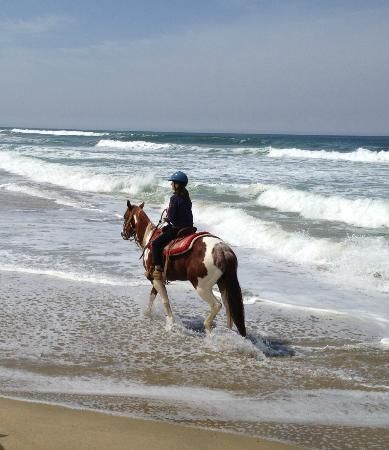 Monterey Bay Equestrian Center: Walking in the ocean