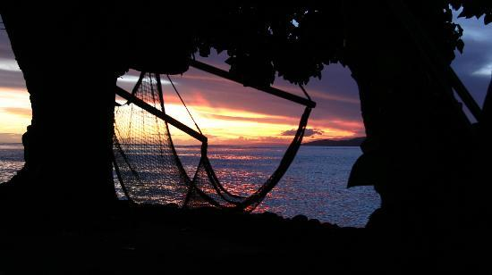 Garden Island Resort: Sunset