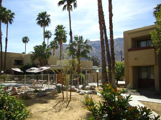 Desert Vacation Villas: View from our patio (Landscape/Pool Area)
