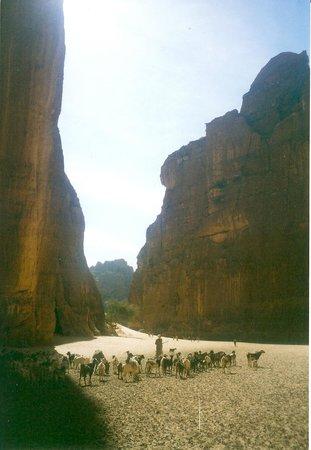 Fada, Chad: Guelta d'Archei