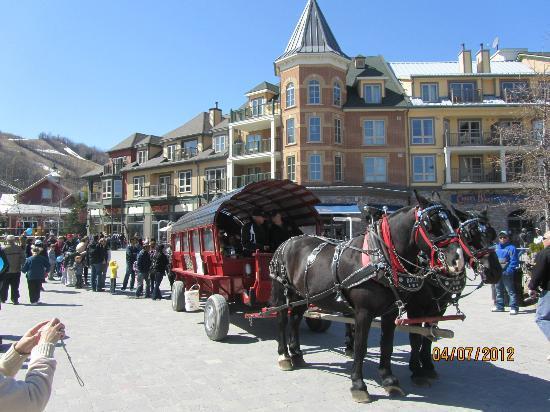 Seasons at Blue - Blue Mountain Resort: The Village