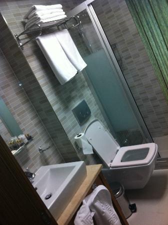 Hotel Istanbul Trend : baño