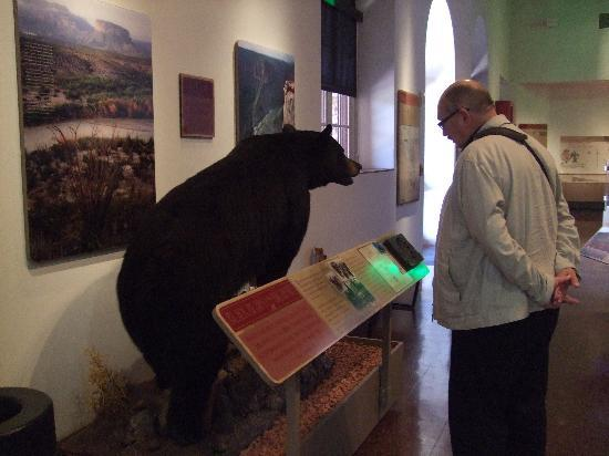Museum of the Big Bend: My hubbies having a chat with a new friend