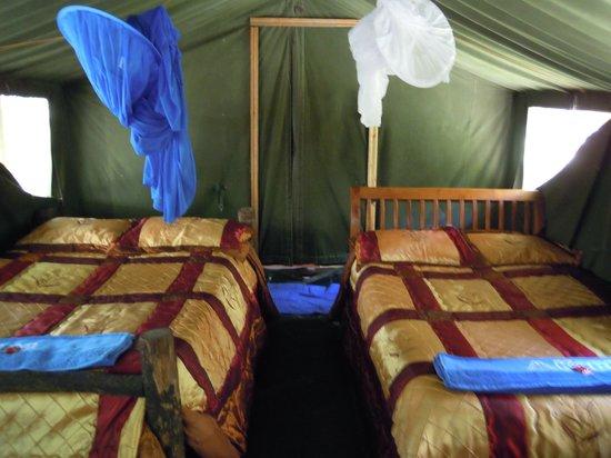 Kimana Camps: la nostra tenda