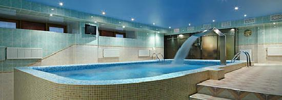 Hotel Gentalion Moscow: Swimming Pool