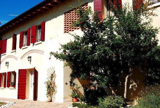 Montebelluna, Italia: Agriturismo Nonna Maria
