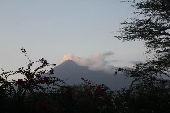 Arusha Safari Lodge: Mount Meru at sunset