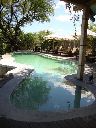 Wilderness Safaris Toka Leya Camp: pool