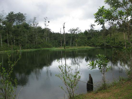 La Carolina Lodge: Lake