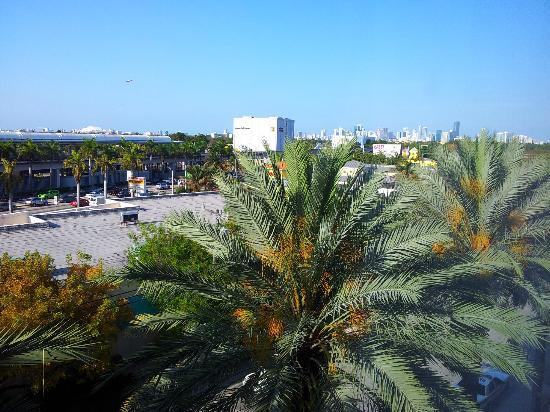 Hampton By Hilton Miami-Coconut Grove/Coral Gables: US1 & Miami Skyline