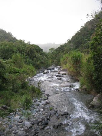 Hotel Uran: Roaring River