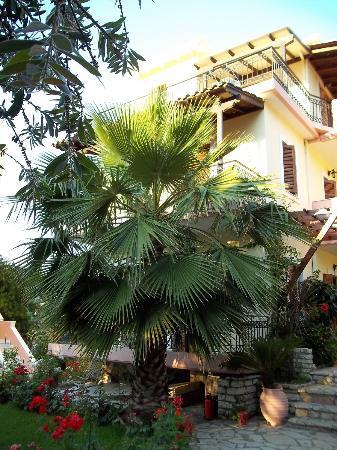 Philippos Hotel Apartments: Appartamenti che hanno sulla baia di Episcopos.