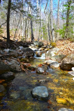 Thornton, Nueva Hampshire: Welch Mountain and Dickey Mountain Loop