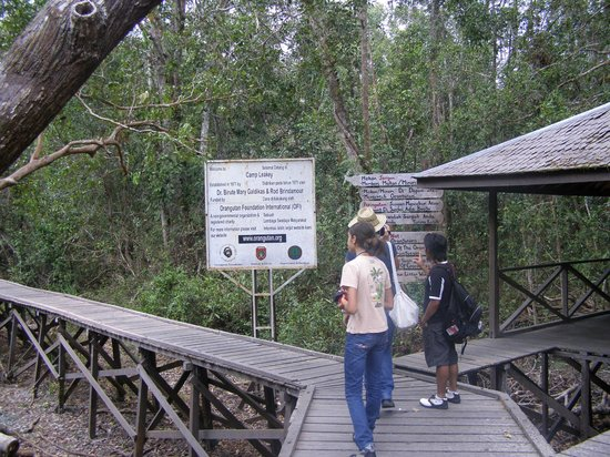 Rimba Orangutan Eco Lodge: Ingresso a Camp Leakey