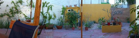 Casa al Centro Inn B & B: Courtyard