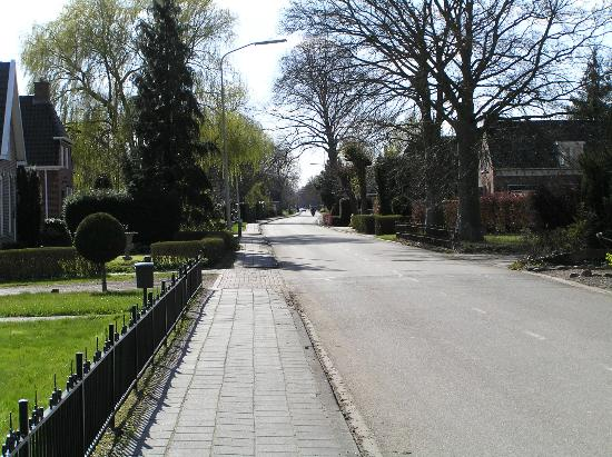 Landgoed Westerlee: De Hoofdweg in Westerlee