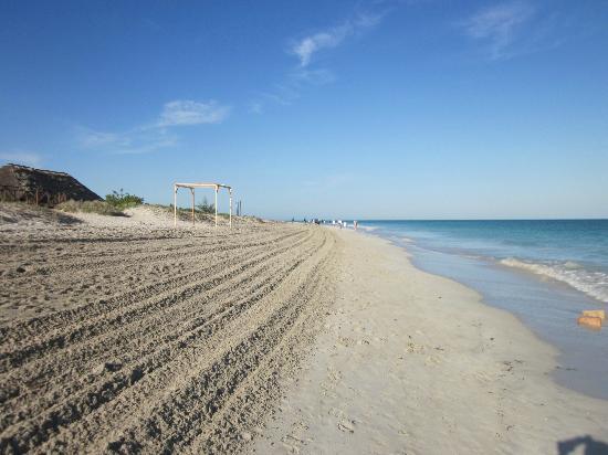 IBEROSTAR Laguna Azul: Beach - worked up every day