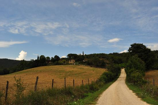 Slow Life Umbria - Relais de charme: view from the road towards Slow Life