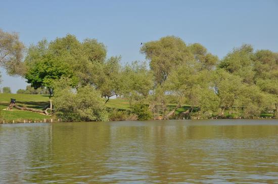 Yarkon River and Park Hayarkon: boating at Park Hayarkon Lake