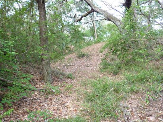 Yellow Bluff Fort: earthwork