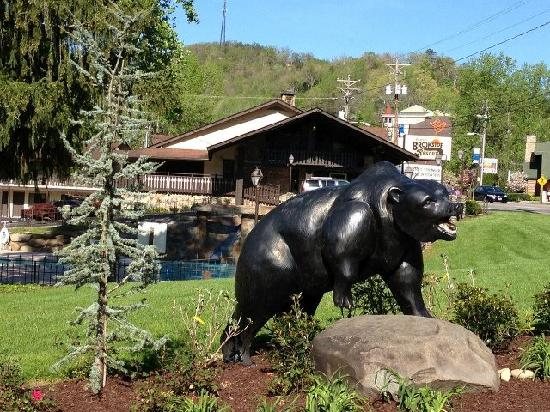 Brookside Resort: Black Bart the Bear