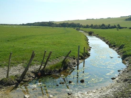 Seven Sisters Country Park: Down in the valley