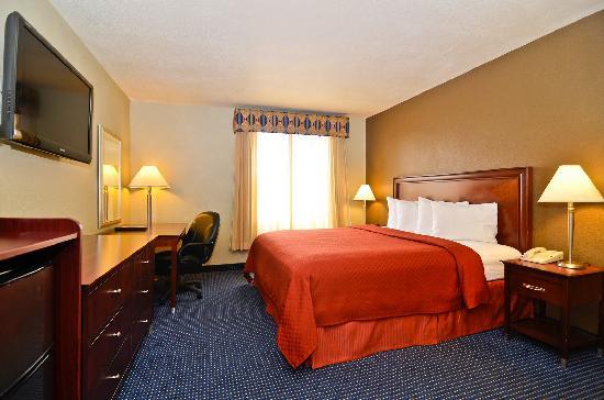 Quality Inn San Diego Miramar : Standard King