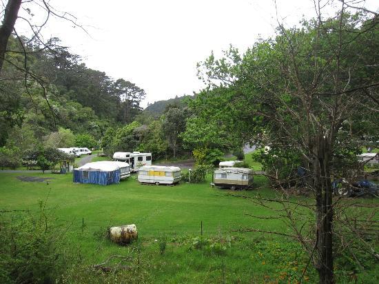 Dickson Holiday Park: Campground